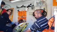 MEHMET AYDıN - Araçların Gürültüsünden Ürken At Ortalığı Birbirine Kattı Açıklaması 3 Yaralı