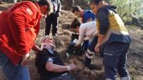 112 ACİL SERVİS - Çıntar Toplarken Düşen Kişi UMKE Tarafından Kurtarıldı