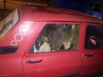 GÖKÇEDERE - Çubuk'ta Hayvan Hırsızı 2 Kişi Tutuklandı