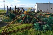 VERGİ DAİRESİ - Kaçak Deniz Patlıcanları Ellerinde Patladı