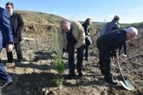 ORMAN İŞLETME MÜDÜRÜ - Tekirdağ'da Örnek Ağaçlandırma