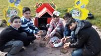 KUŞ YUVASI - Altındağlı Çocuklar Sokak Hayvanlarına Sahip Çıktı