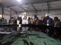 BEYMELEK - Botsvanalı Ve Gambiyalı Uzmanlara Balıkçılık Eğitimi