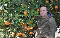 ÇEK CUMHURIYETI - Gıda İthalatı Üretimi Vurdu