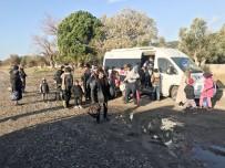 SURİYE - Jandarma Ekipleri Drone İle Tespit Ettiği 101 Kaçağı Yakaladı
