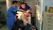 112 ACİL SERVİS - Travestinin Usturalı Saldırısına Uğrayan Genç Ölümden Döndü
