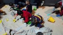 DINOZOR - Miniklerin Dinozor Merakı