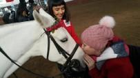Özel Çocuklara ESOGÜ At Binicilik Meslek Yüksek Okulu'nda Atlarla Terapi