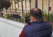 CANLI YAYIN - Yaşlı adamın cesedini sosyal medyadan canlı yayınladı