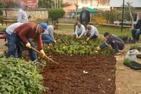 HRANT DİNK - Akdeniz'de Parklar Çiçek Bahçesine Döndü
