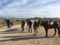 CENTİLMENLİK - Manavgat Belediyesi'nden Rahvan Atlara Antrenman Sahası