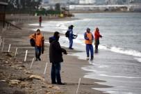 RAMAZAN YıLMAZ - Balıkçılar Aliağa'da Yarıştı