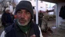 İBRAHIM BALCı - Yaralı Dağ Keçisi Tedavi Altına Alındı