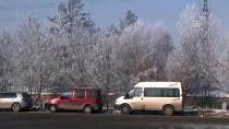 BUZ SARKITLARI - Yüksekova'da Soğuk Hava Ve Sis