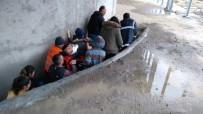 CEPHANELİK - Merdivenlerden Düştü, İnleye İnleye Ambulansa Bindirildi