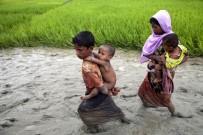 SOYKıRıM - 'Arakan Krizinden Myanmar Ordusu Sorumlu'