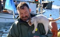 Balık Avında Kedisi Yalnız Bırakmıyor
