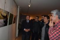 ABDULLAH KARAKUŞ - Gaziantep'te İlk Doğa Sanatı Sergisi Açıldı