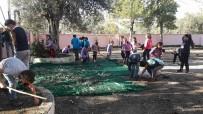 ZEYTINLI - Öğrenciler Zeytinyağı Üretip Kazandıkları Paralar İle Yardım Yaptılar
