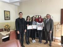 RESİM YARIŞMASI - Serik Anadolu'da Ödüllü Resim Yarışması