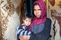 HARABE - Van Büyükşehir Belediyesi Suriyeli Aileye Sahip Çıktı