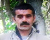 PKK - O teröristin katıldığı eylemler açıklandı