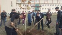 SAĞLIK ÇALIŞANLARI - Bingöl'de Hastane Bahçesine Fidan Dikildi