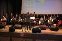 SANAT MÜZİĞİ - Elazığ'da Eğitimcilerden Konser