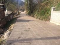 ASLANCAMI - Kırsalda Beton Yol Çalışmaları Ediyor