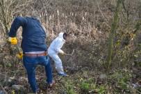 KATİL ZANLISI - Cesetle 900 Kilometre Yol Gitmişti Açıklaması Daha Önce De Cinayet İşlemiş