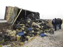 KAMYON ŞOFÖRÜ - Meyve Yüklü Kamyon Devrildi 2 Kişi Yaralandı