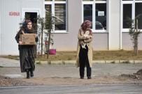 Öğrencilerden Sokak Hayvanlarına Duyarlı Davranış