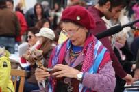 TAŞKıRAN - Eski Türk Geleneği Nartugan Bodrum'da Düzenlenen Etkinliklerle Kutlandı