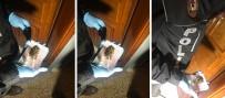 CENNET MAHALLESI - İstanbul'da şafak vakti narkotik operasyonu
