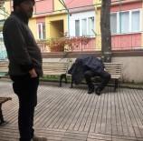 MECIDIYE - Cami Avlusunda Otururken Hayatını Kaybetti