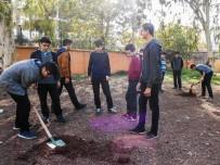 EĞITIM İŞ - Muratpaşa'dan Okul Bahçelerine Ağaç