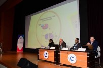 VEHBİ KOÇ - Üniversitede GAP Bölge Kalkınma İdaresi İle Proje İşbirliği İstişaresi Yapıldı