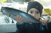 BALIKÇI ESNAFI - (Özel) Kahramanmaraş'ta Balık Fiyatları Tavan Yaptı