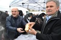 MEHMET YAPıCı - 4 Ton Hamsi Festivalde Dağıtıldı