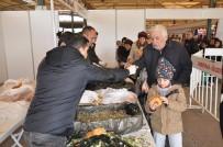 BOSTANLı - Hamsi Şöleni'nde 5 Ton Hamsi Dağıtıldı