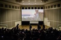 BELGESEL FİLM - İstanbul Kedileri Rus Sinemalarında