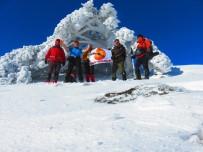 KAZDAĞLARI - Bu Görüntü Kutuplarda Değil Ege'de Çekildi