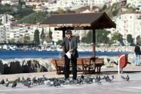 DEPREM RİSKİ - Gemlik'in Taşınma Kararı İlçe Halkını Sevindirdi