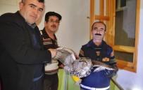 Havalandırma Boşluğuna Düşen Baykuşu İtfaiye Kurtardı