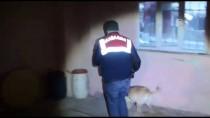 İNŞAAT MALZEMESİ - İstanbul'da Hırsızlık Şüphelilerine Operasyon
