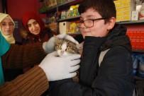 Öğrencilerden Kediye Şefkat Eli