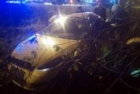 MUSTAFA AYHAN - Samsun'da Taksi Takla Attı Açıklaması 1 Ölü, 2 Yaralı