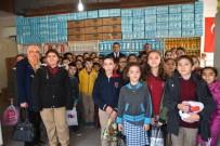 TAYTAN - Taytanlı Öğrencilerinden Sosyal Markete Destek