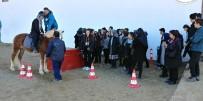 EDREMIT BELEDIYESI - 57 Devlet Okulunun Öğrencileri Atlarla Buluşuyor