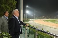 HIPODROM - Adana'da 'Kızkalesi Koşusu'